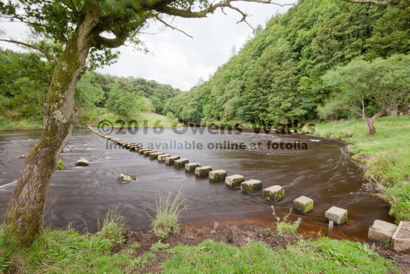 stepping stones at Whitewell